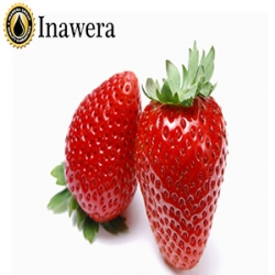 Strawberry Shisha 100ml