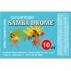Samba Drome